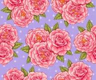 Rosas sem emenda Fotografia de Stock
