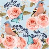 Rosas sem emenda do vintage Imagens de Stock Royalty Free