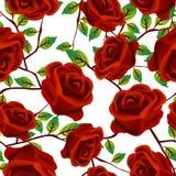 Rosas sobre o branco, teste padrão Imagens de Stock