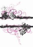 Rosas sujas Imagens de Stock Royalty Free