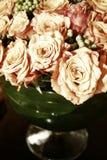 Rosas tailandesas alaranjadas 012 Foto de Stock Royalty Free