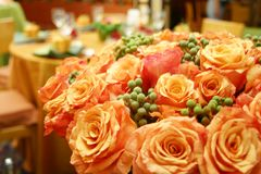 Rosas tailandesas alaranjadas 015 Fotografia de Stock Royalty Free