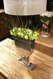 Rosas verdes no interior imagem de stock royalty free