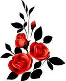 Rosas vermelhas Fotografia de Stock Royalty Free