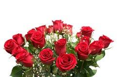 Rosas vermelhas. Foto de Stock Royalty Free