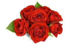 Rosas vermelhas Fotos de Stock Royalty Free