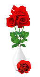 Rosas vermelhas bonitas no vaso branco isolado no branco Fotografia de Stock