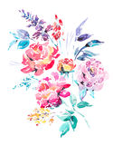 Rosas vermelhas da aquarela - flores, galhos, folhas, botões Foto de Stock Royalty Free