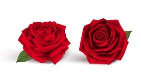 Rosas vermelhas doces de dia de Valentim Fotografia de Stock