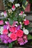 Rosas vermelhas e orquídeas bonitas Imagem de Stock