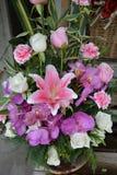 Rosas vermelhas e orquídeas bonitas Fotografia de Stock