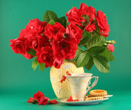 Rosas vermelhas e um copo do chá Imagens de Stock