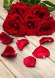 Rosas vermelhas frescas Fotografia de Stock Royalty Free