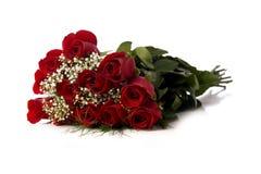 Rosas vermelhas no branco Foto de Stock
