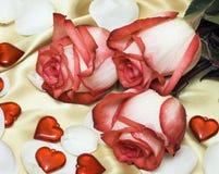 Rosas vermelhas no cetim com corações imagem de stock