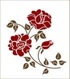 Rosas vermelhas no fundo branco ilustração royalty free