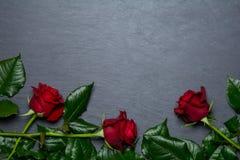 Rosas vermelhas no fundo da ardósia Fotos de Stock