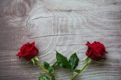 Rosas vermelhas no fundo de madeira vazio Imagens de Stock