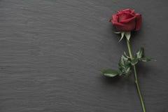 Rosas vermelhas no fundo vazio da ardósia Fotos de Stock Royalty Free