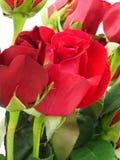 Rosas vermelhas no ramalhete Imagens de Stock Royalty Free