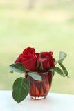 Rosas vermelhas no vidro Fotografia de Stock Royalty Free