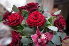 Rosas vermelhas, orquídeas e eucalipto frescos no arranjo imagem de stock royalty free