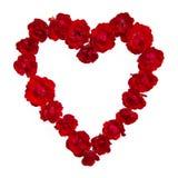 Rosas vermelhas que formam uma forma do coração foto de stock