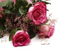 Rosas y anillos de bodas Imagen de archivo libre de regalías