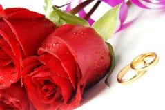 Rosas y anillos de bodas Imágenes de archivo libres de regalías