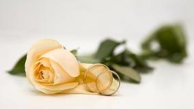 Rosas y anillos de bodas amarillos Foto de archivo libre de regalías