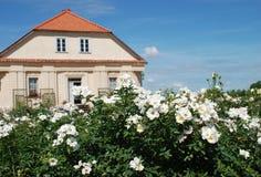 Rosas y casa hermosas del `s del jardinero en fondo Imagen de archivo