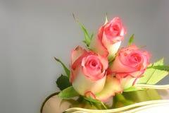Rosas y chocolates Imagen de archivo