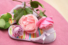 Rosas y deslizadores Foto de archivo libre de regalías