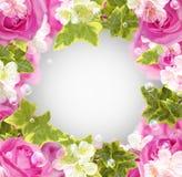 Rosas y flores blancas Imagenes de archivo