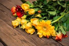 Rosas y herberas amarillos, anaranjados en un fondo de madera Women imagen de archivo