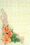 Rosas y perlas Fotos de archivo libres de regalías