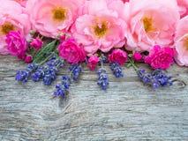 Rosas y ramo abiertos rizados rosados de la lavanda de Provence en el weath fotos de archivo