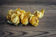 Rosas yelloy secas no fundo de madeira Imagens de Stock