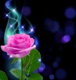 Rose и дым Стоковые Фото