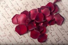 Rose Photos stock