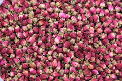Rose. Buds for tea in china Stock Photos