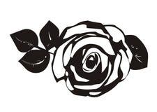 Rose. Beauty rose flower with leaf Stock Illustration