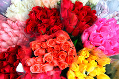 Roses. A bouquet of Colored Roses Royalty Free Stock Photo