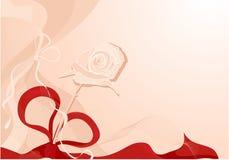rose, ilustracji