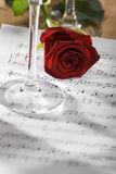Rose. Red rose on a sheet of notes close up shoot Stock Images