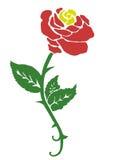 Rose Стоковые Изображения