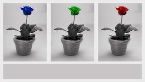 Rose. In pot Royalty Free Stock Image