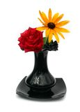 Rose. Beautiful flowers in a black vase on a white background Royalty Free Stock Image