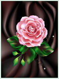 Rose. With green leaves on brown atlas Royalty Free Stock Photography