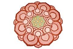 Rose abstrait de lotus peint Images libres de droits